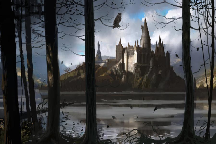 Harry Potter Serisi Hakkında Diğer Bilinmeyenler