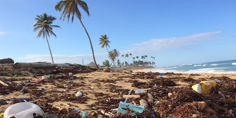 Ne Kadar Plastik Tüketiyorsun ?
