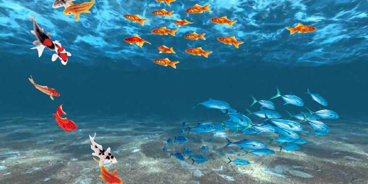 Rüyada Balık ve Deniz Canlıları Görmenin Derin Anlamları